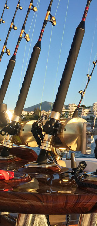 Marbella & Puerto Banus Sea Fishing Trips