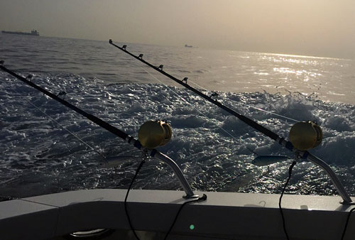 Marbella big game fishing charters